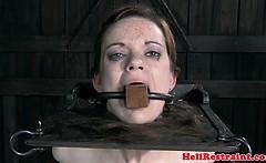 BDSM bondage sub whipped and flogged
