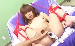 utterly Horny Japanese Milfs Sucking