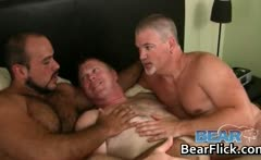 Begging for the gay bear jizz